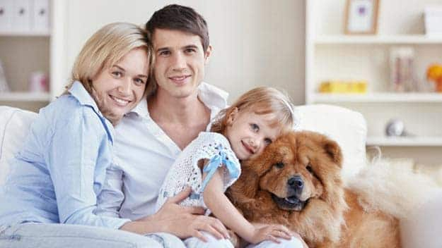Wills & Trusts dog-young-family Direct Wills Bournville